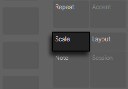 Push2Scale.png