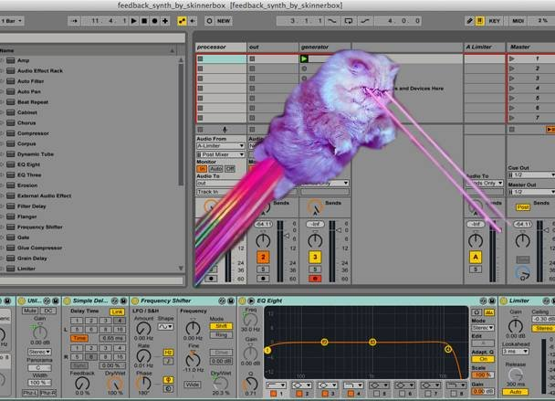 Iftah Gabbai's feedback synth - laser cat optional.