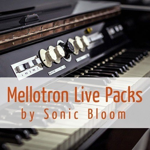 sonic-bloom-mellotron.jpg